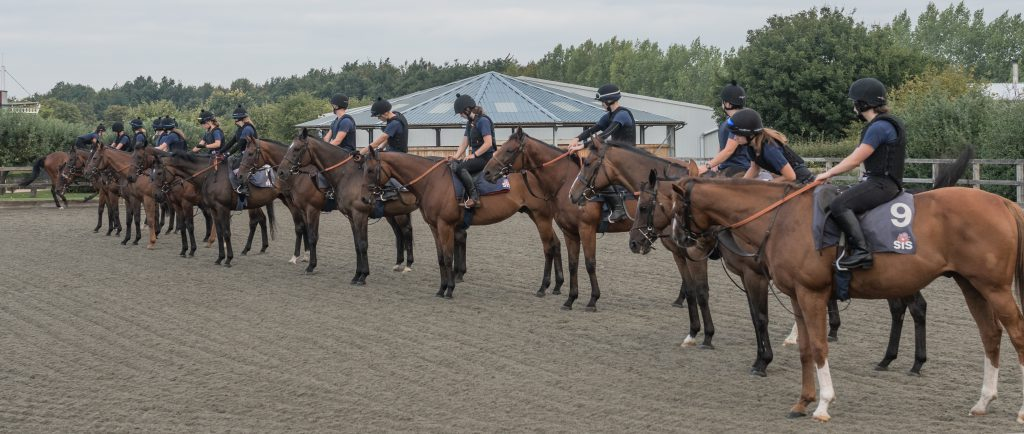 Horses and riders at the British Racing School